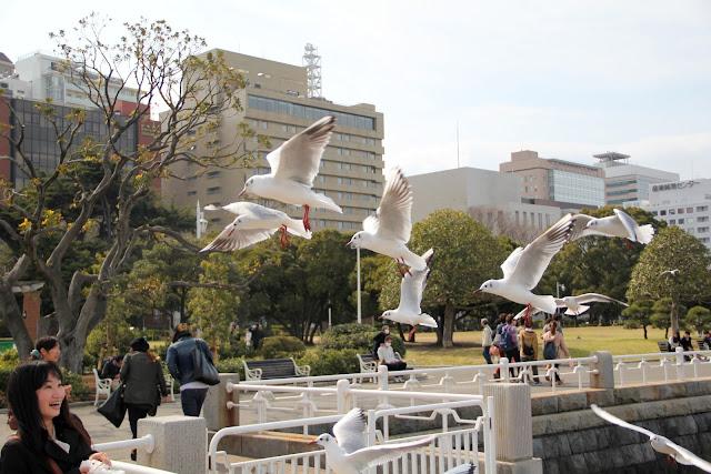 日本 橫濱 山下公園