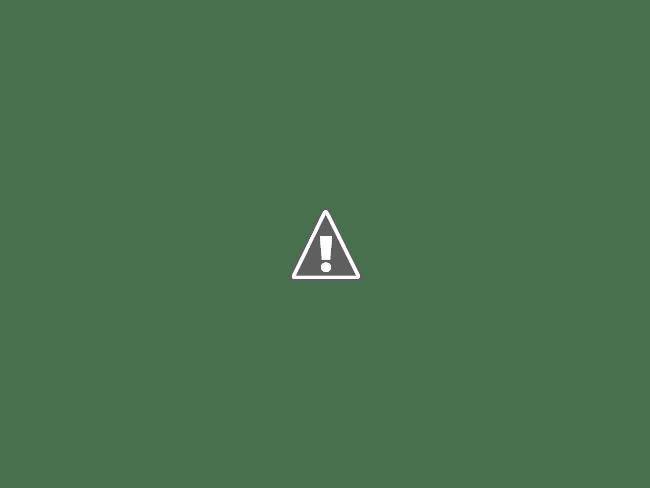 06 08 2013 03 - Водные мосты Европы