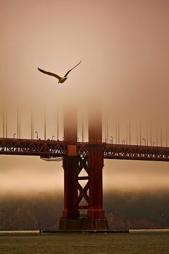 Brume au Golden Bridge de San Francisco