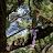 Jackson Darrow avatar image