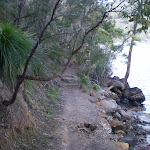 Track between Apple Tree Bay and the Int of the Berowra and Mt Ku-Ring-Gai Tracks (30650)