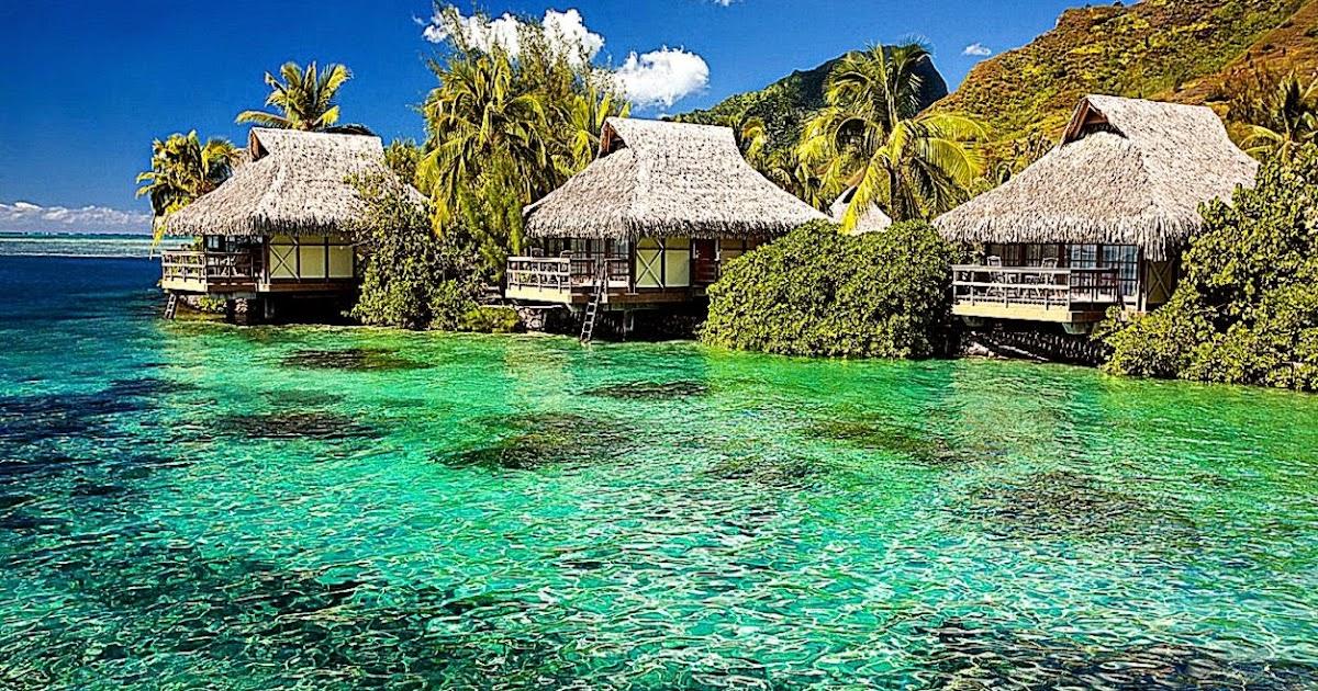tropical island screensavers best free hd wallpaper. Black Bedroom Furniture Sets. Home Design Ideas