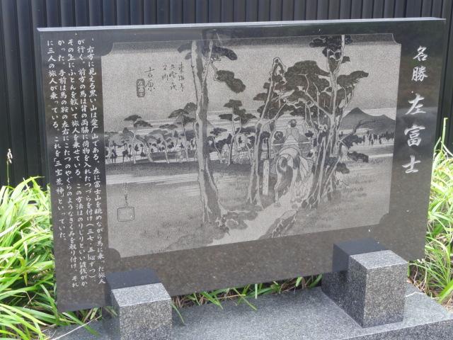 旧東海道左富士の松 東海道五十三次