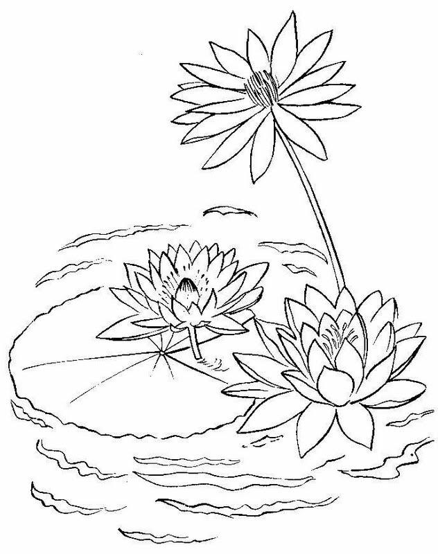 Flor de río