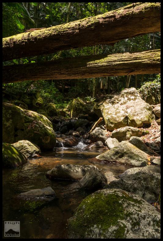 The path up Christmas Creek