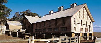 Warrock Shearing Shed