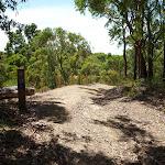Trail through forest near Murray's beach (389024)