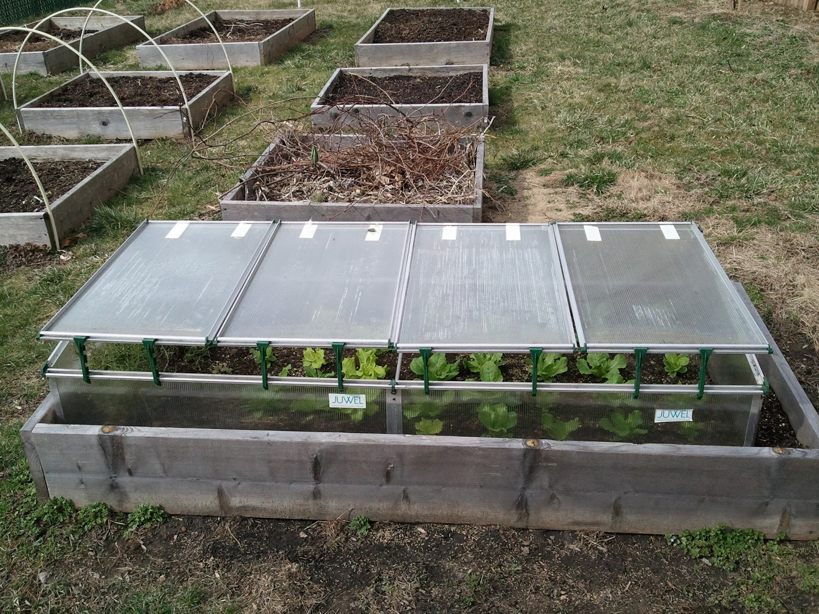 italian gardening cold frame protects plants during winter
