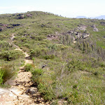 Track from Mt Hay car park (40191)