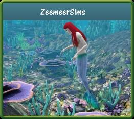 PT gids ZeemeerSims