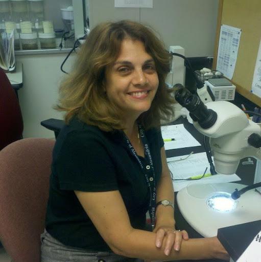 Ivette Sanchez - Address, Phone Number, Public Records | Radaris