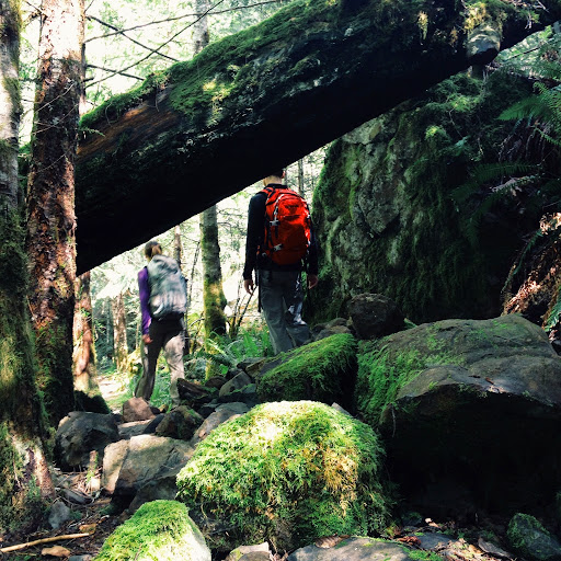 A Forest Gateway To Adventure. To Peden Lake and Beyond: A Photoadventure