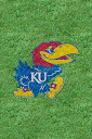 Kansas%252520Jayhawks%252520Grass.jpg