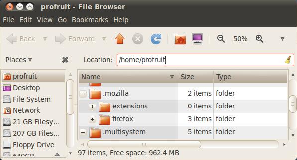 каталог .mozilla в Ubuntu 10.04