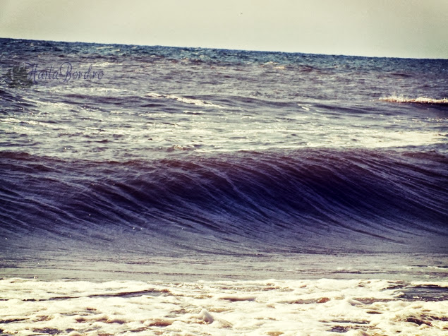 marea neagra vadu august 2013