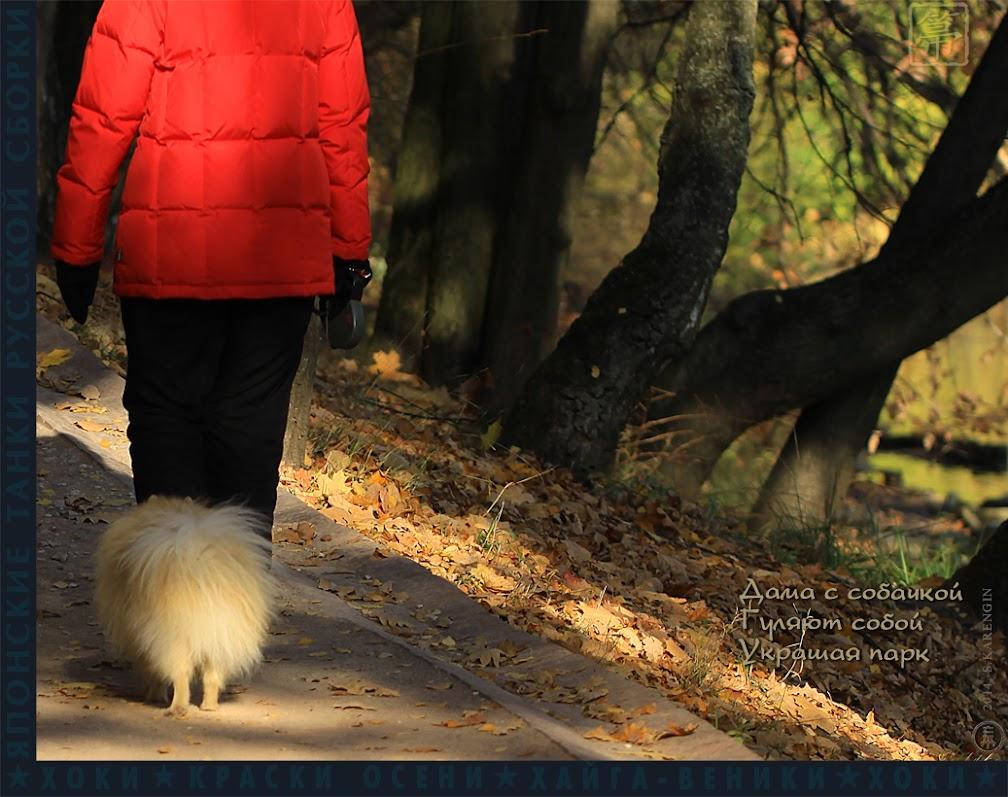хоки, hoki, осень, autumn colors, краски осени, дама с собачкой
