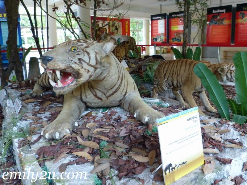 Muzium Alam Semulajadi