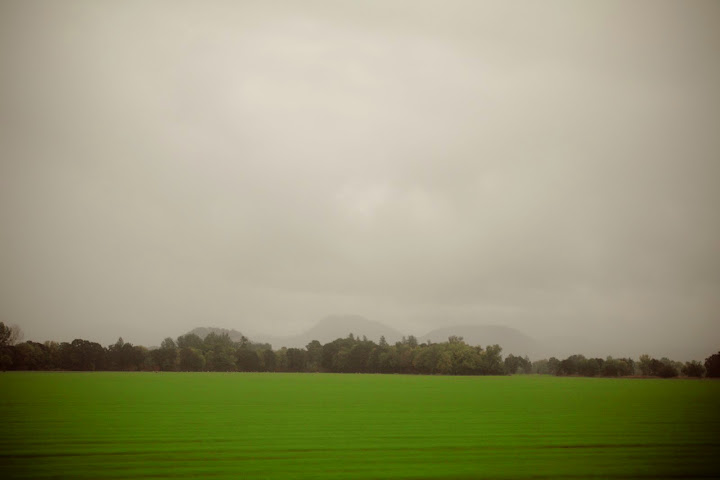 Green Growth in the Misty Lands