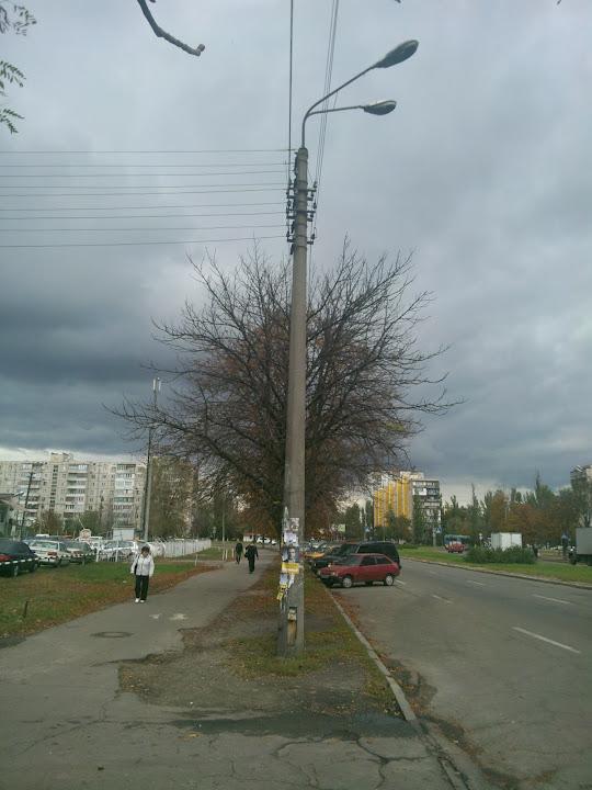 Пример фотографии улицы на Asus Padfone