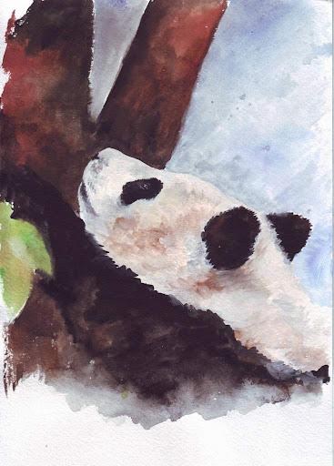 Осенняя Панда дня