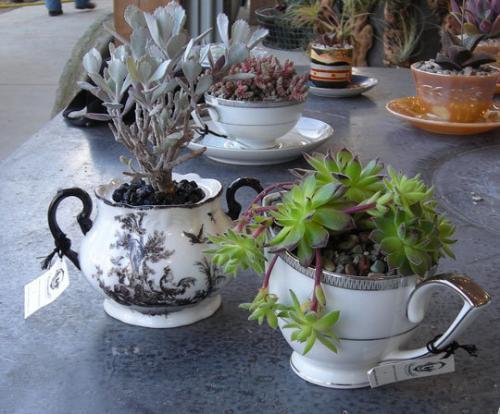Tazas para nuestras plantas somosdeco blog de decoraci n for Decoracion con tazas de cafe