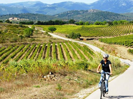 Catalonia - Empordà Wine Country Tour