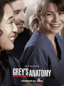Anatomía de Grey Temporada 10 Online
