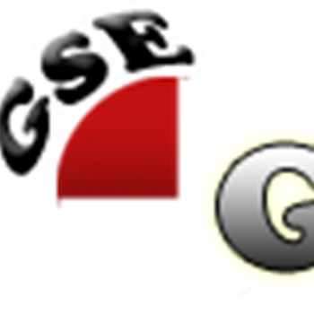 Who is GSE Gadgets?