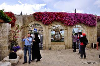Город Давида. Экскурсия Иерусалим подземный. Гид в Израиле Светлана Фиалкова.