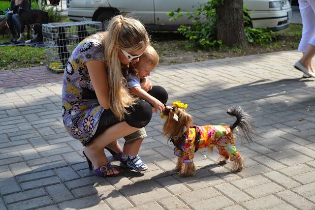 2-3 июля 2011г. Украина 2хCACIB (фотоотчёт) 0_a3fc1_5179bb6_orig