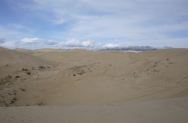 sand dunes and snowcapped mountains near Qinghai Lake