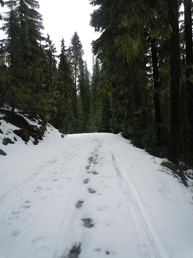 Slush road