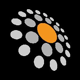 Raidious logo