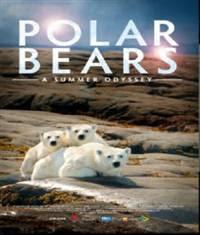 Polar Bears: A Summer Odyssey - Gấu bắc cực