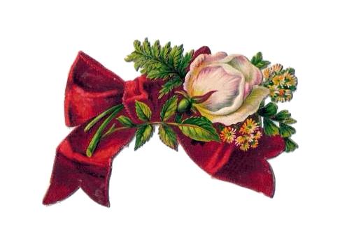 https://lh5.googleusercontent.com/-hDJf0rh30Yg/TXUx1DaHpEI/AAAAAAAACWE/MaKJJ5PyXxU/s1600/penny_plain_victorian_scraps_flowers_with_bow_001.png