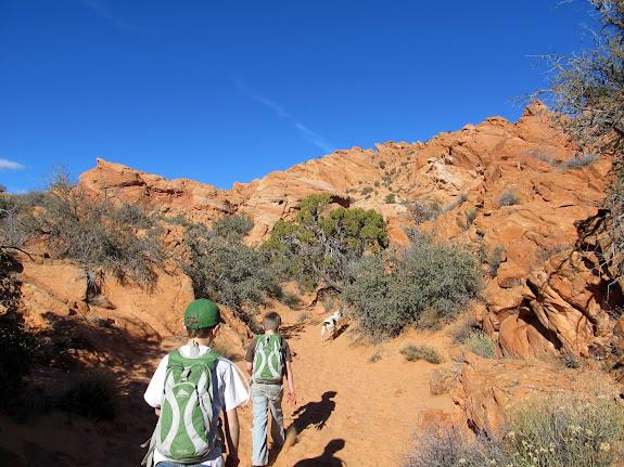 Hiking southwest of Sandstone Mountain