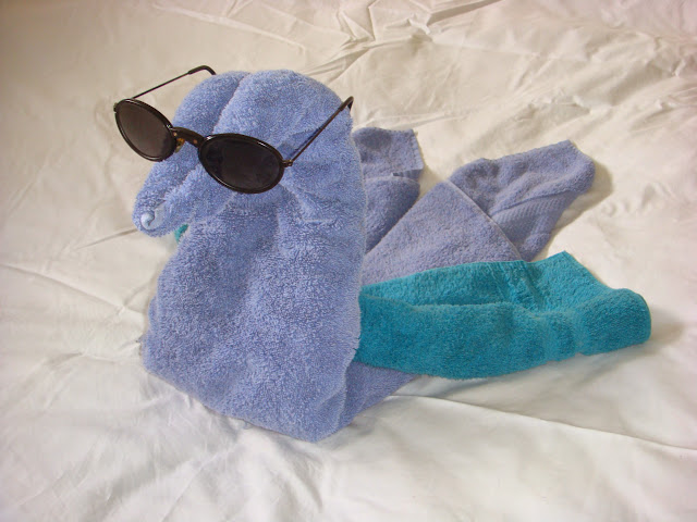 Towel Swan Sunglasses