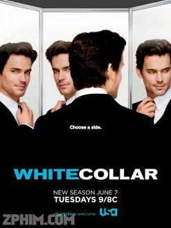 Cổ Cồn Trắng 3 - White Collar Season 3 (2011) Poster