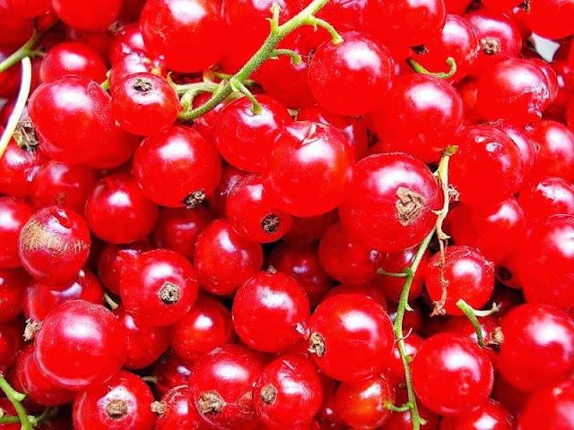 Польза красной смородины