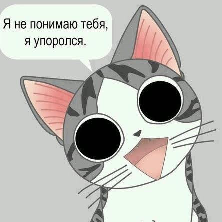 Антон Шепетюк