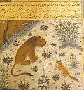شیر و روباه در دشت سخن میگویند مینیاتور کلیله و دمنه نقاشی ایرانی مینیاتور persian iranian iran paint panting teymuri painting نقاشی مکتب تیموری
