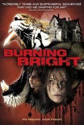 Kẻ Giết Hổ - Burning Bright poster