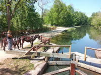 Mule team prepares to pull canal boat