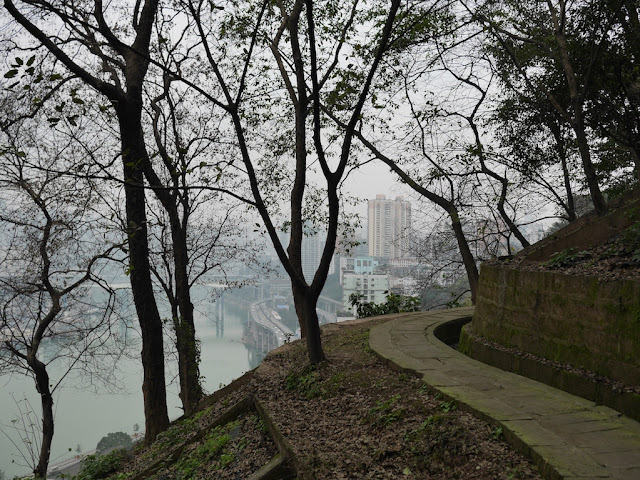 Path through trees on the side of a hill in Chongqing