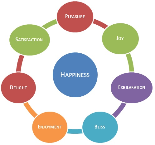 how do you define happiness and how to achieve it