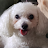 Kenny Xie avatar image