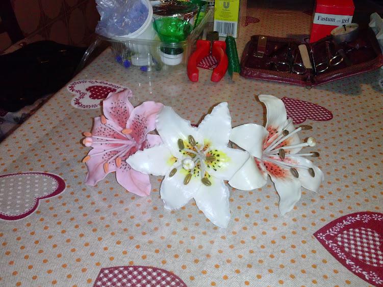Lilium in Pasta di Mais CAM02049