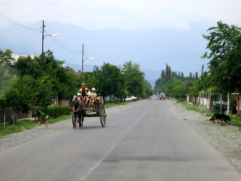 Leliani road