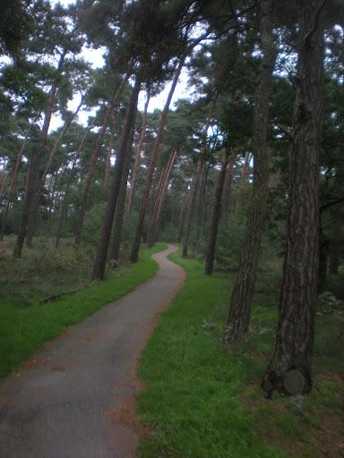 Marche Kennedy (80km) de Bergeijk (Nl): 16-17/09/2011 DSCN7162