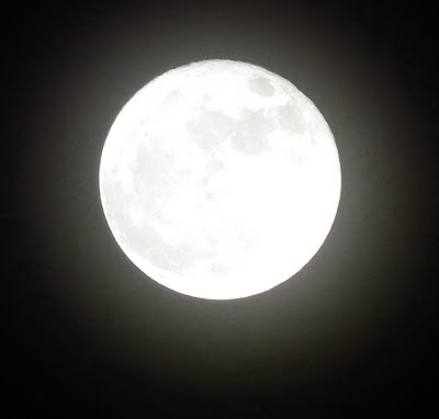 Full Moon March 19th, 2011